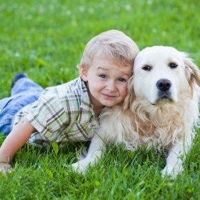 Cùng con nuôi dưỡng lòng trắc ẩn và sự đồng cảm