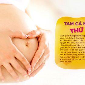 Đến 3 tháng giữa (tam cá nguyệt thứ hai), em bé sẽ phát triển mạnh mẽ về trọng lượng và chiều dài